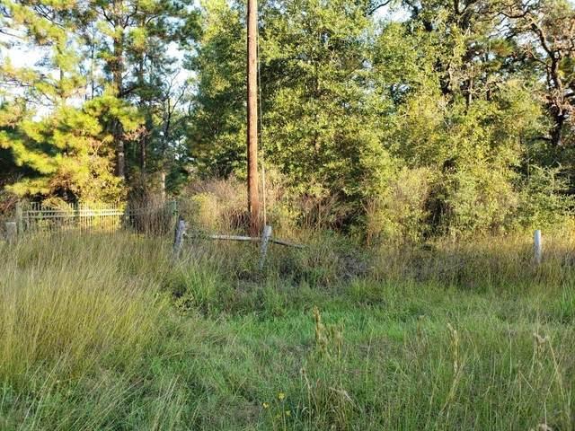31656 Reids Prairie Road, Hempstead, TX 77445 (MLS #93538400) :: Caskey Realty