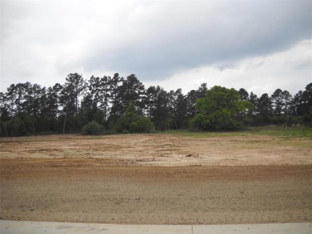 36665 High Meadow Industrial Lane, Magnolia, TX 77354 (MLS #93646249) :: Fairwater Westmont Real Estate