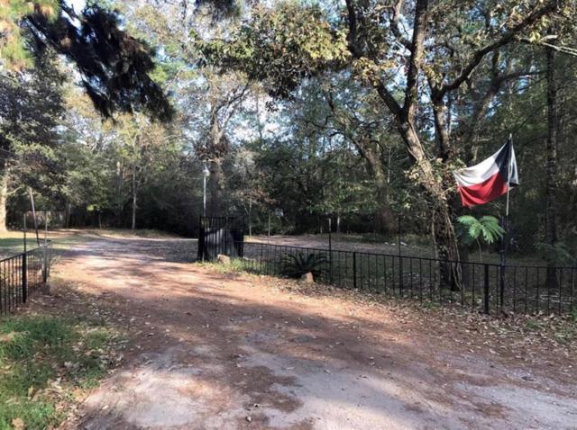 26806 Sea Turtle Lane, Magnolia, TX 77355 (MLS #9365412) :: Texas Home Shop Realty