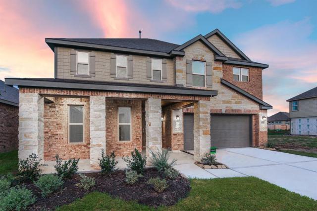 3313 Anderwood Arbor Lane, Pearland, TX 77584 (MLS #93763923) :: Fairwater Westmont Real Estate