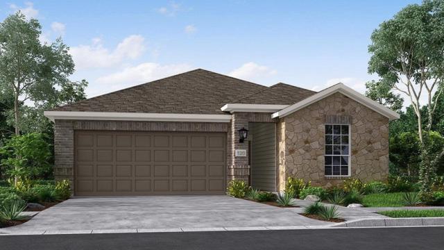 19031 Fulvetta Haven, Richmond, TX 77407 (MLS #9381486) :: The Home Branch