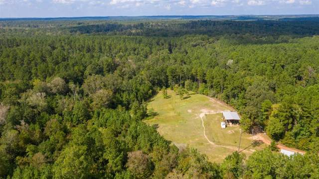tbd Farm To Market Road 3065, Colmesneil, TX 75938 (MLS #93843013) :: The Parodi Team at Realty Associates