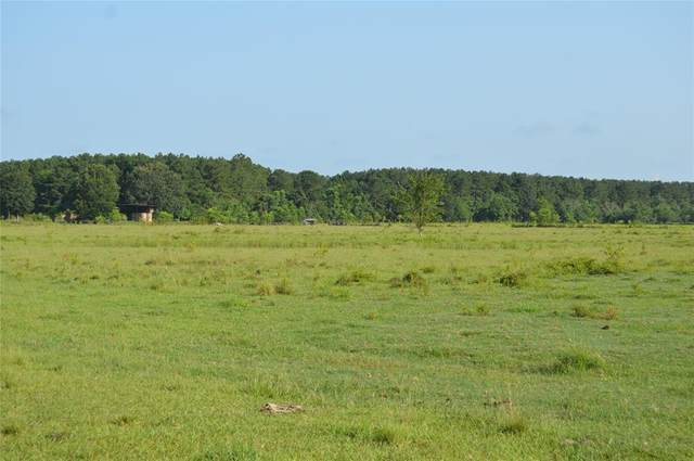 TR 8 County Road 2276, Cleveland, TX 77327 (MLS #93911059) :: Lerner Realty Solutions
