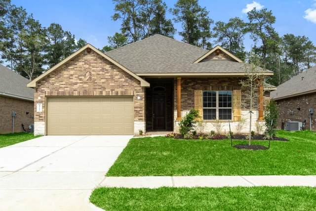 10208 Goose Creek, Conroe, TX 77384 (MLS #93930277) :: Giorgi Real Estate Group