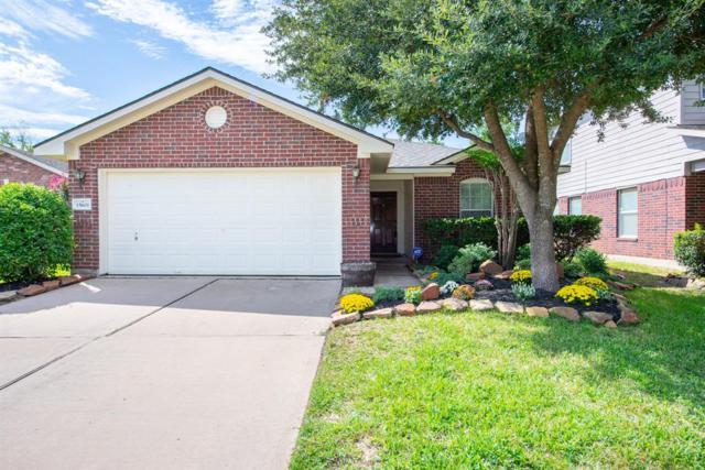 15611 Barber Grove Lane, Houston, TX 77095 (MLS #9394885) :: Fairwater Westmont Real Estate