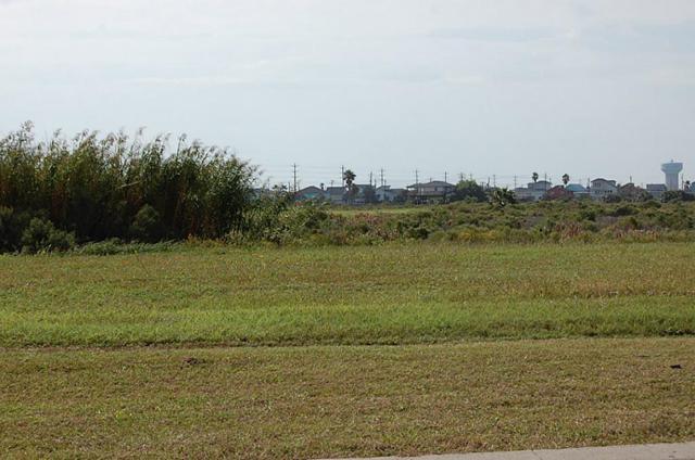 4006 Curlew Drive, Galveston, TX 77554 (MLS #93995791) :: Texas Home Shop Realty