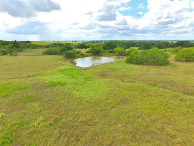 TBD Anton Salas Loop, La Grange, TX 78945 (MLS #94043963) :: The SOLD by George Team