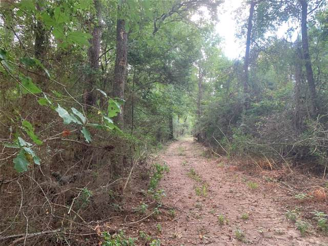 TBD Chain Drive, Livingston, TX 77351 (MLS #94070577) :: The SOLD by George Team