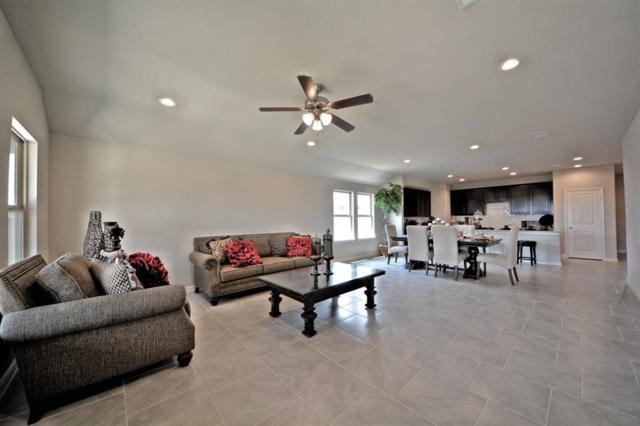 6310 Indigo Cliff Drive, Rosenberg, TX 77469 (MLS #94079220) :: Texas Home Shop Realty