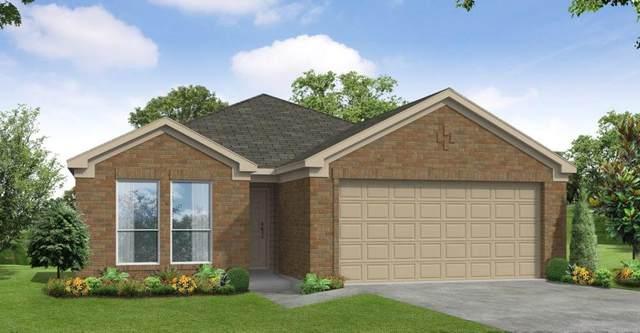 2619 Ridgeback Drive, Rosenberg, TX 77471 (MLS #94119143) :: The Freund Group