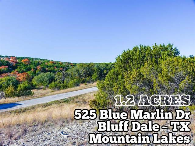525 Blue Marlin, Bluff Dale, TX 76433 (MLS #9415751) :: The SOLD by George Team
