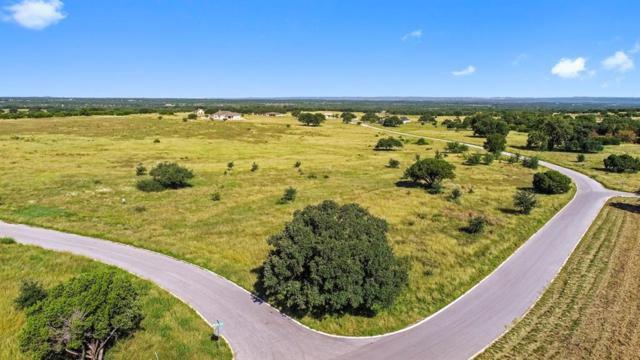 Lot 9 Vintage Oak Court, Marble Falls, TX 78654 (MLS #94169786) :: Ellison Real Estate Team