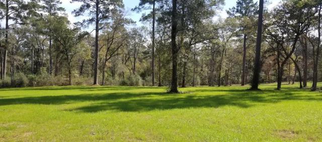 8211 Clark Road, Plantersville, TX 77363 (MLS #94230173) :: Texas Home Shop Realty
