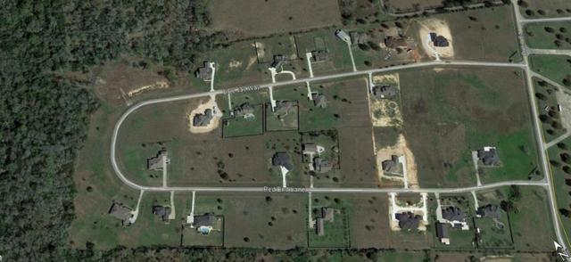 2310 Blue Jay Way, Pattison, TX 77423 (MLS #9430193) :: Caskey Realty