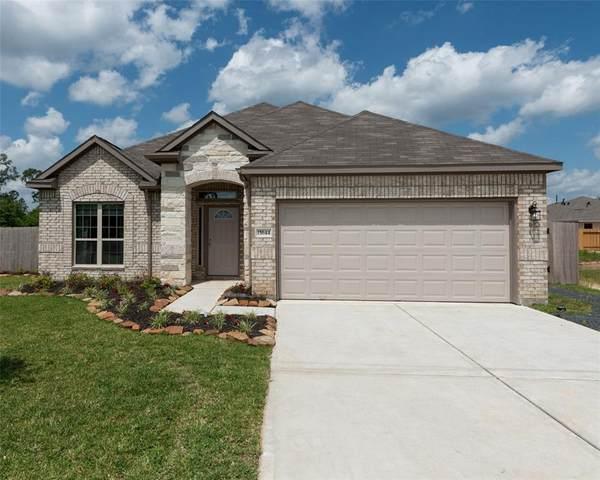 13521 Diamond Reef Lane, Texas City, TX 77568 (MLS #94307357) :: The Sansone Group