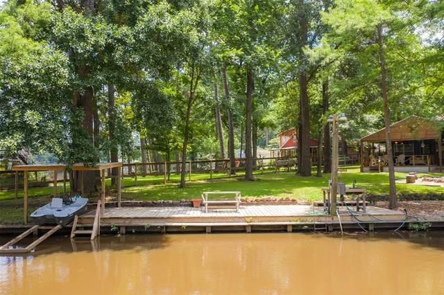 25902 Water Ridge Drive, Huffman, TX 77336 (MLS #94375508) :: Christy Buck Team