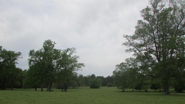 14448 Cedar Lane Loop, Willis, TX 77378 (MLS #94397946) :: The Home Branch