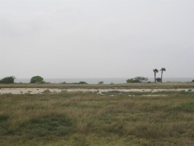 Lot 43 Blk 2 Bay Club Drive, Seadrift, TX 77983 (MLS #94475043) :: Michele Harmon Team