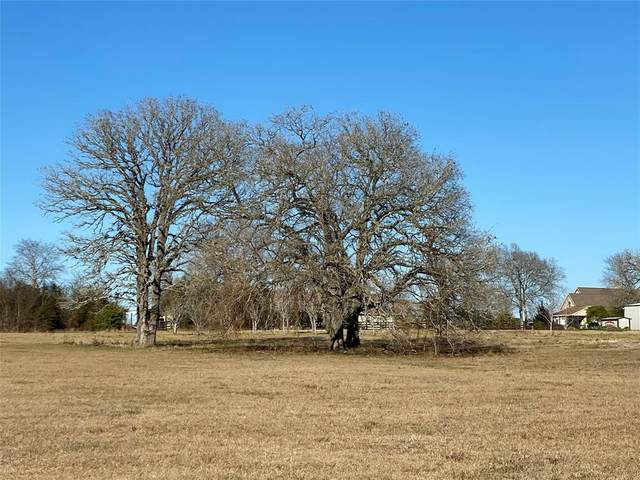 10.5 Acres Spring Branch Road, Montgomery, TX 77316 (MLS #9450572) :: The Bly Team