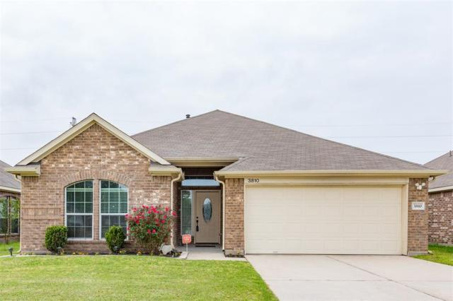 3810 Elderberry Drive, Dickinson, TX 77539 (MLS #94551297) :: JL Realty Team at Coldwell Banker, United