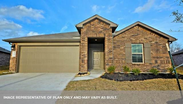 1703 Goose Island Lane, Rosenberg, TX 77469 (MLS #94554924) :: The Home Branch