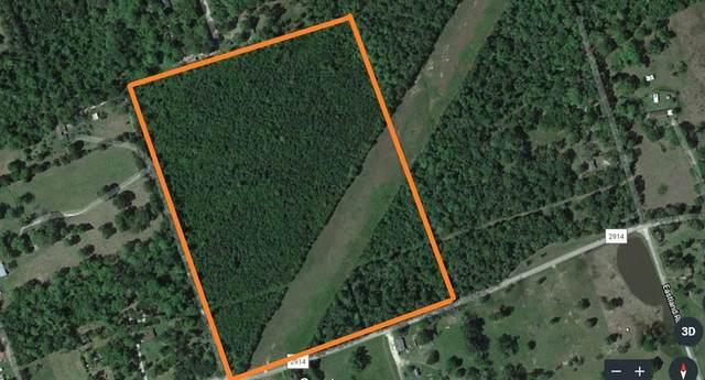 0000 Springtown    Aka  Fm 2914 Road, Shepherd, TX 77371 (MLS #94591546) :: My BCS Home Real Estate Group