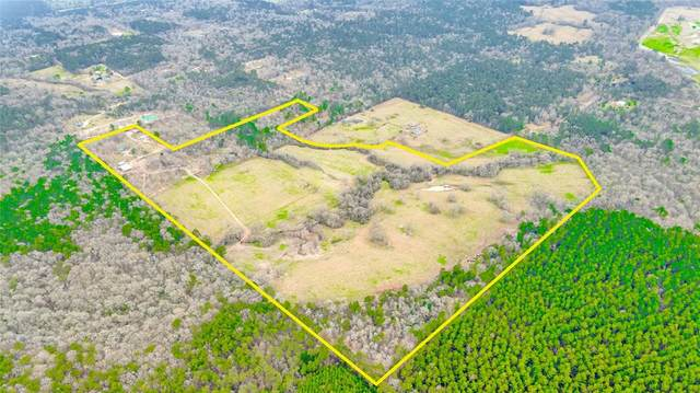 210 Western Court, Coldspring, TX 77331 (MLS #94624480) :: All Cities USA Realty