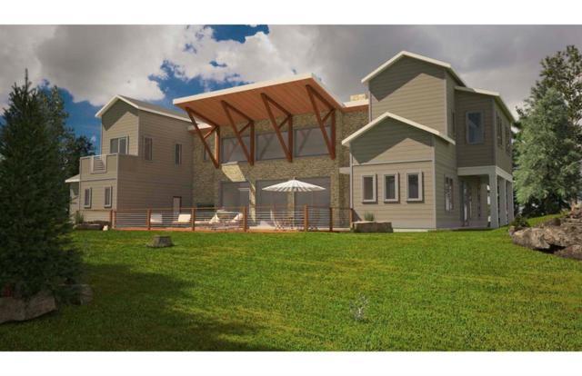 176 Grand Pine Loop, Livingston, TX 77351 (MLS #94632505) :: Mari Realty