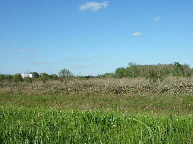 0 Fm 2919, Beasley, TX 77417 (MLS #94647466) :: Giorgi Real Estate Group