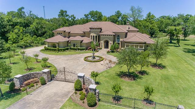 2618 Forest Vw, Richmond, TX 77406 (MLS #94651471) :: Team Sansone