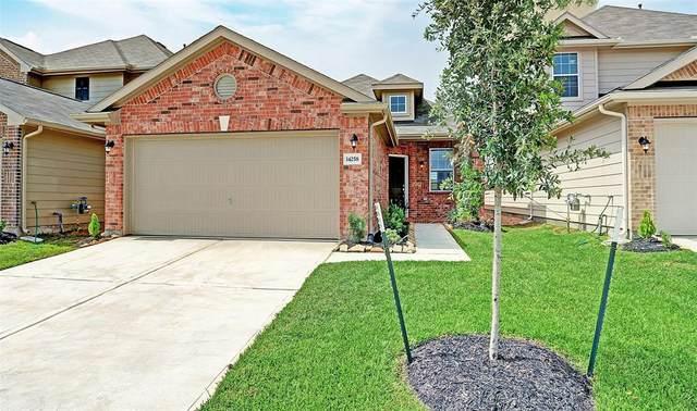 14258 Valverde Point Lane, Houston, TX 77083 (MLS #94672264) :: The SOLD by George Team