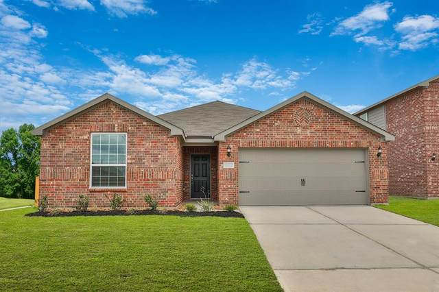 1107 Rare Fancy Drive, Iowa Colony, TX 77583 (MLS #94705317) :: The Freund Group