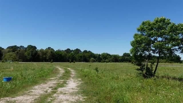 4003 County Road 197, Alvin, TX 77511 (MLS #94820553) :: Guevara Backman