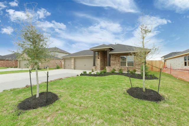 9003 Downing Street, Rosenberg, TX 77469 (MLS #94852171) :: The Sansone Group