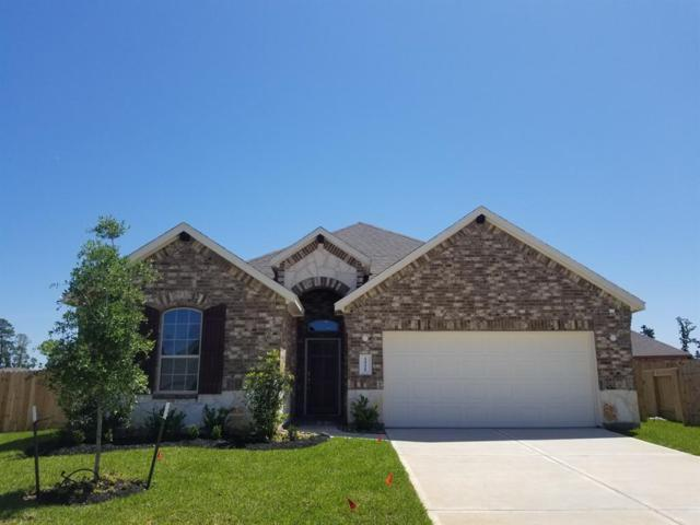 14228 Irvine Ranch, Conroe, TX 77384 (MLS #94885358) :: The SOLD by George Team
