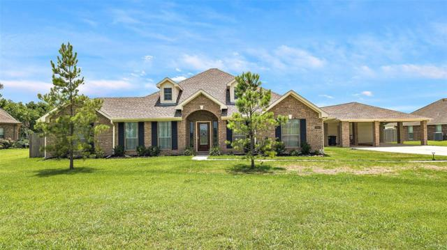 28003 Palm Breeze Lane, Rosharon, TX 77583 (MLS #94903358) :: The SOLD by George Team