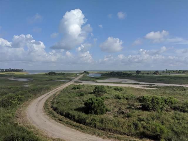 Lot 105 Camino, Galveston, TX 77554 (MLS #95105416) :: Caskey Realty