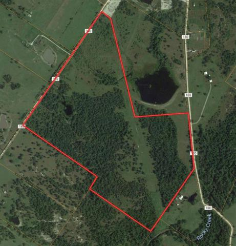 140 Acres County Road 180, Anderson, TX 77830 (MLS #95164574) :: Fairwater Westmont Real Estate