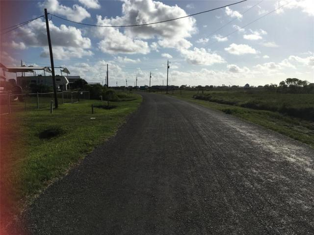 12220 County Road 204, Sargent, TX 77414 (MLS #95224470) :: The SOLD by George Team