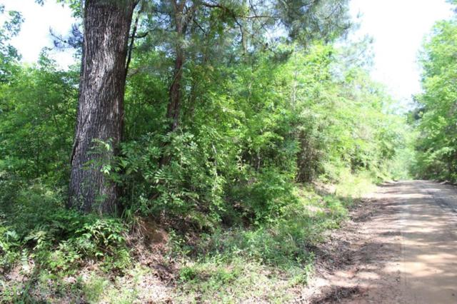 17 ac County Road 1090, Wiergate, TX 75977 (MLS #9527168) :: Texas Home Shop Realty