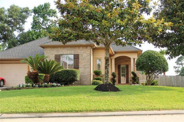 3327 Fair Falls Drive, Houston, TX 77345 (MLS #95299940) :: Magnolia Realty