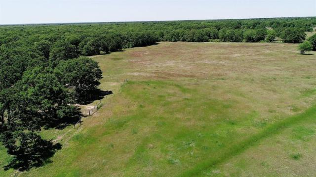 00 Schehin Road, College Station, TX 77845 (MLS #95320532) :: Texas Home Shop Realty
