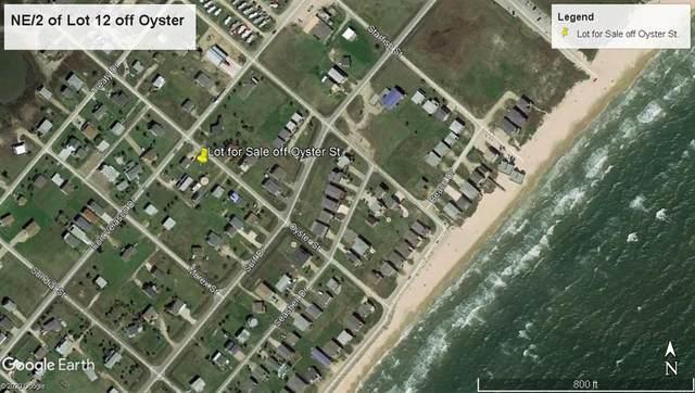 000 Oyster, Surfside Beach, TX 77541 (MLS #95331094) :: The Freund Group