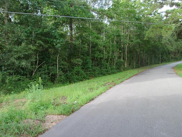 TBD Dirden Road, Shepherd, TX 77371 (MLS #95333328) :: NewHomePrograms.com LLC