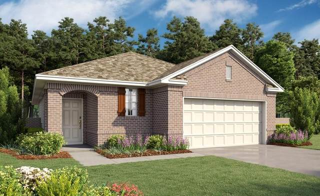 12806 Firbrae Drive, Humble, TX 77346 (MLS #95346950) :: Connell Team with Better Homes and Gardens, Gary Greene