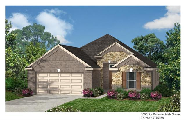 10310 Eagle Hollow Drive, Humble, TX 77338 (MLS #95382325) :: The SOLD by George Team