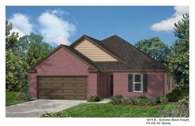 6115 Osprey Drive, Rosenberg, TX 77471 (MLS #95419039) :: The Home Branch