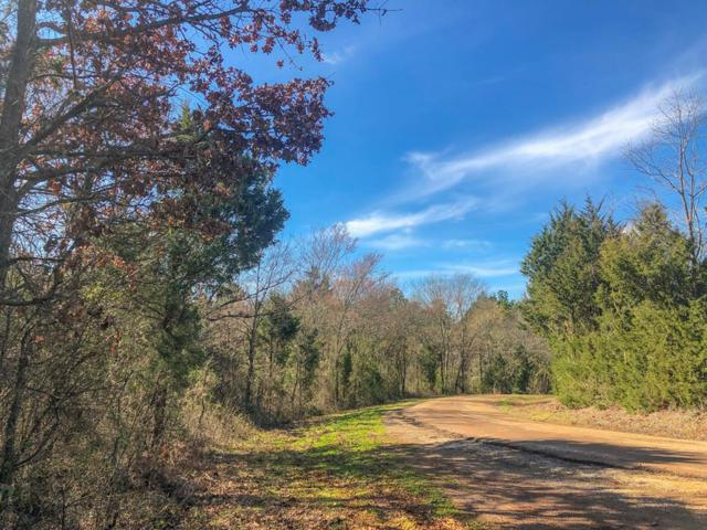 29 Ac County Road 4221, Jacksonville, TX 75766 (MLS #95469113) :: The Home Branch