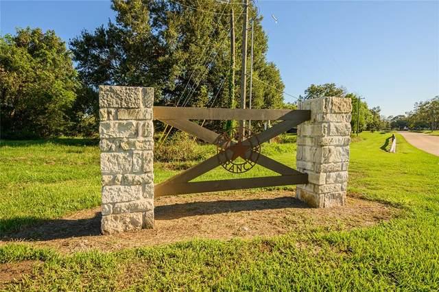 Lot 161 Sandy Trail, Angleton, TX 77515 (MLS #95488053) :: Caskey Realty