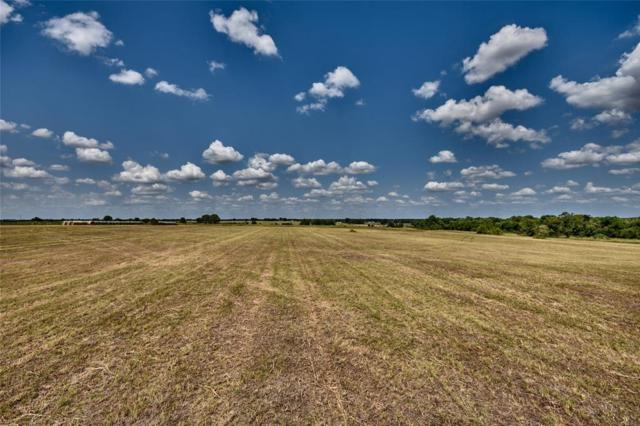 00 Old Chappell Hill Road, Brenham, TX 77833 (MLS #95554558) :: The Heyl Group at Keller Williams
